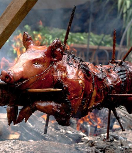 Traiteur cochon grillé au feu de bois Pas-de-Calais